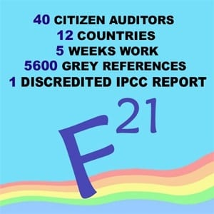 citizen_audit_graphic300