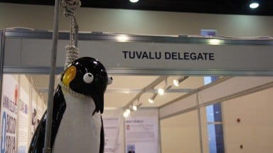 noosed_penguin2