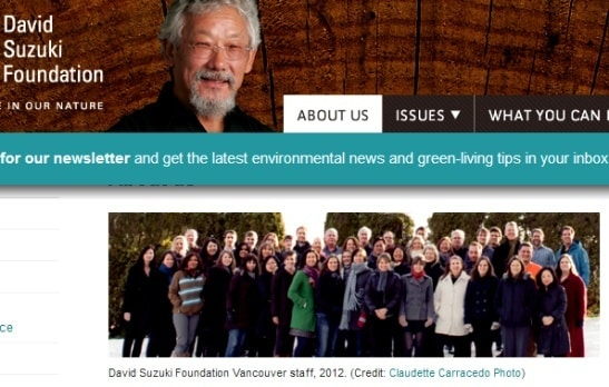 Greens Against Growth – Except Their Own