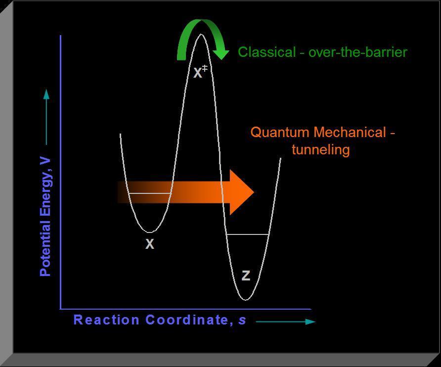 Nature Quantum Tunneling