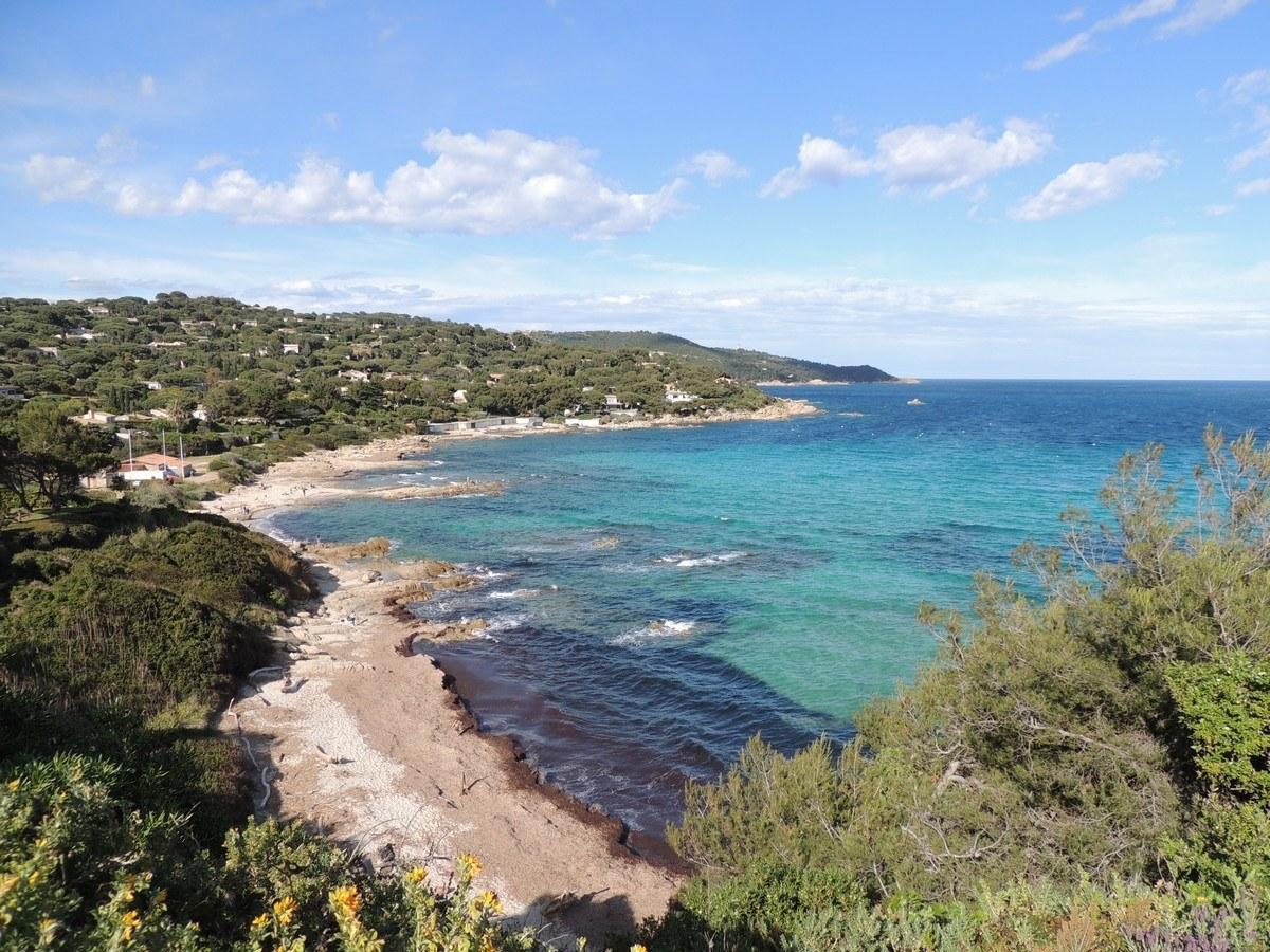 Mediterranean Coral Reef