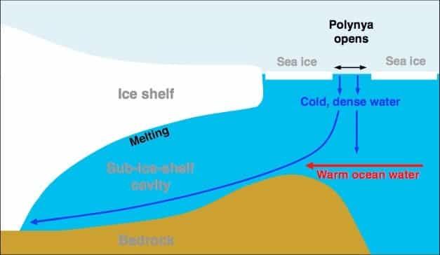 West Antarctica Melting, Amazon Not Helping