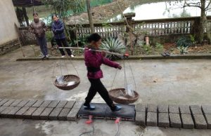 How Springy Bamboo Poles Help Villagers Carry Incredibly Heavy Loads