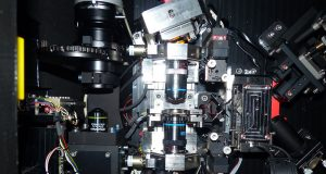 New method captures real-time movement of millions of molecules in 3-D