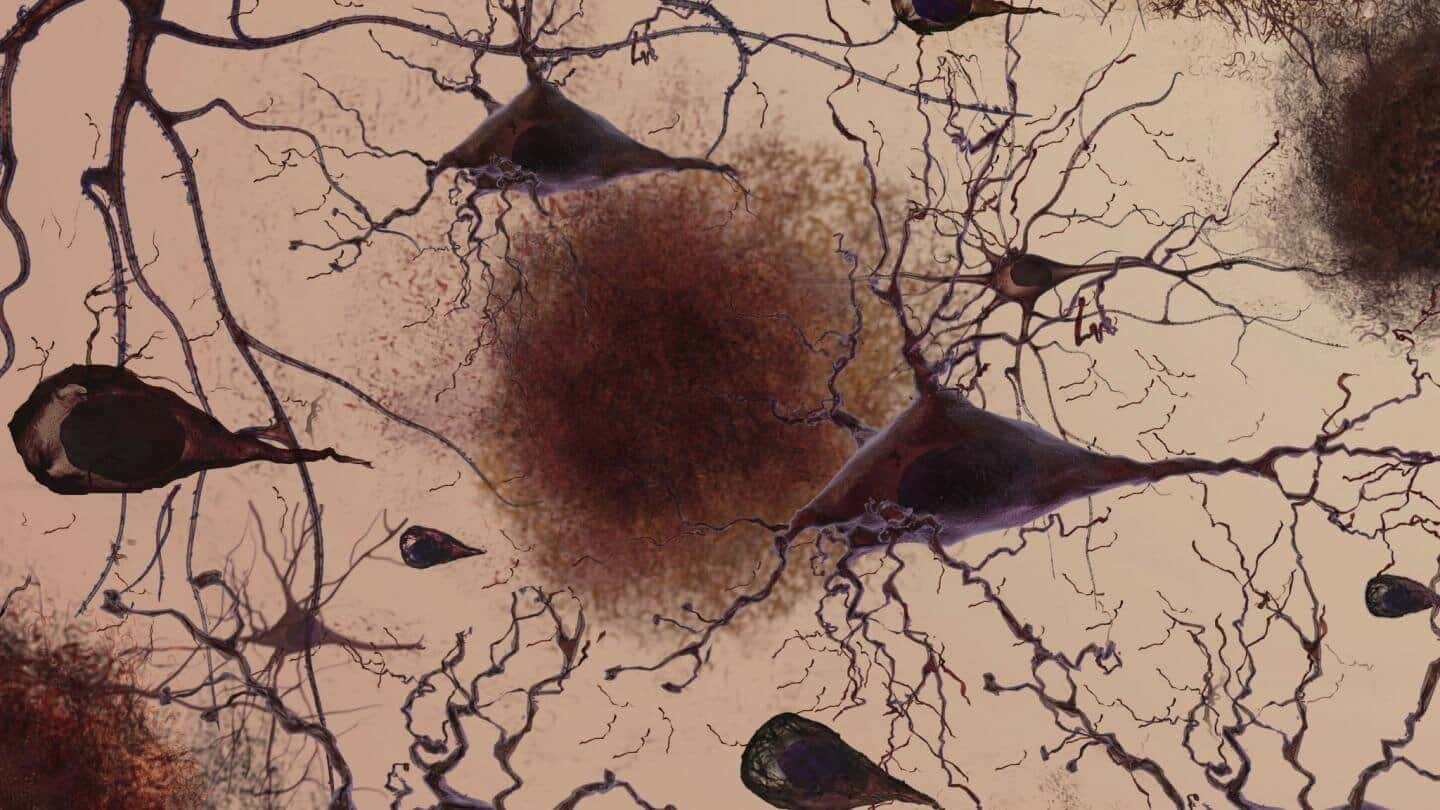 Objective subtle cognitive difficulties predict amyloid accumulation and neurodegeneration