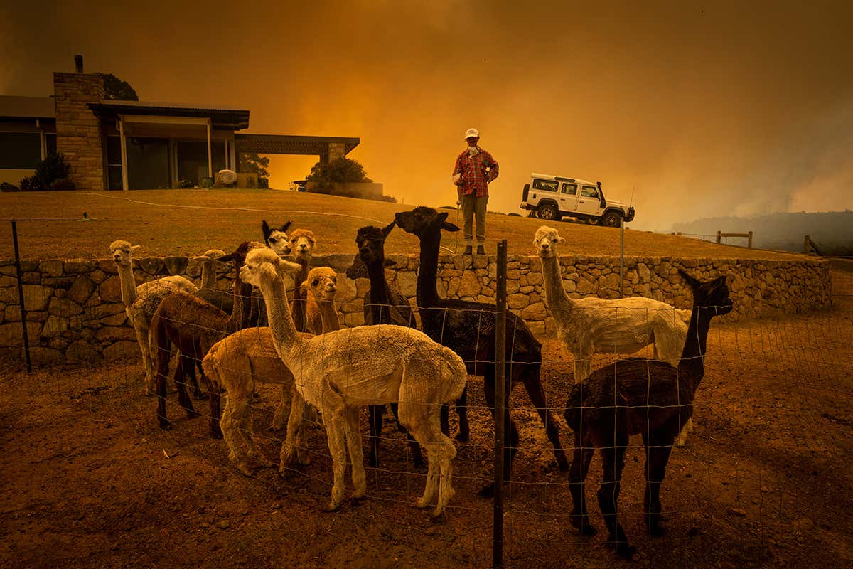Australian government report predicted severe wildfires 11 years ago