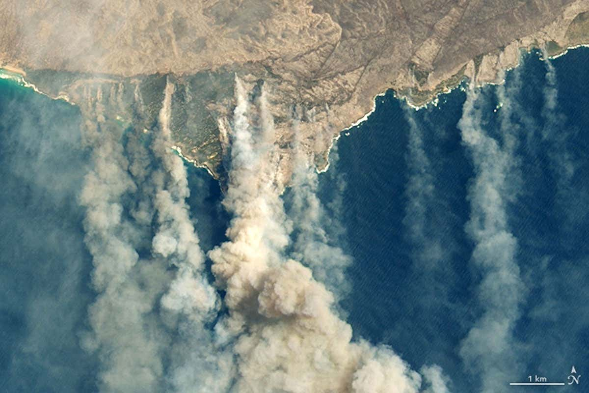 Analysis confirms that climate change is making wildfires worse