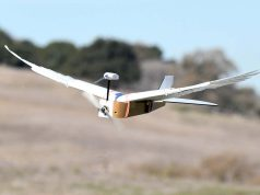 A robot equipped with real pigeon feathers flies like a living bird