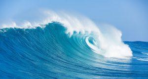 PawnHub Creates Waves As Hong Kong's First Licensed Crypto Lender