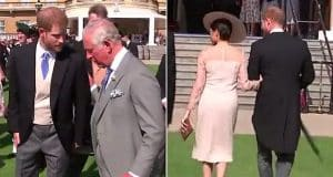 Lip-reading expert debunks claims footage shows rift between the Sussexes and Prince Charles